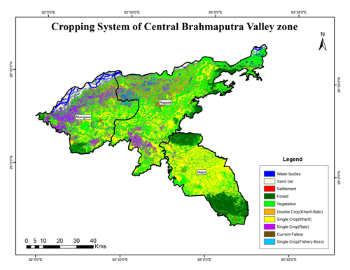 Cropping System of Central Brahmaputra Valley Zone