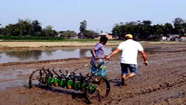 IRRI develops entrepreneurship in seed sector ...